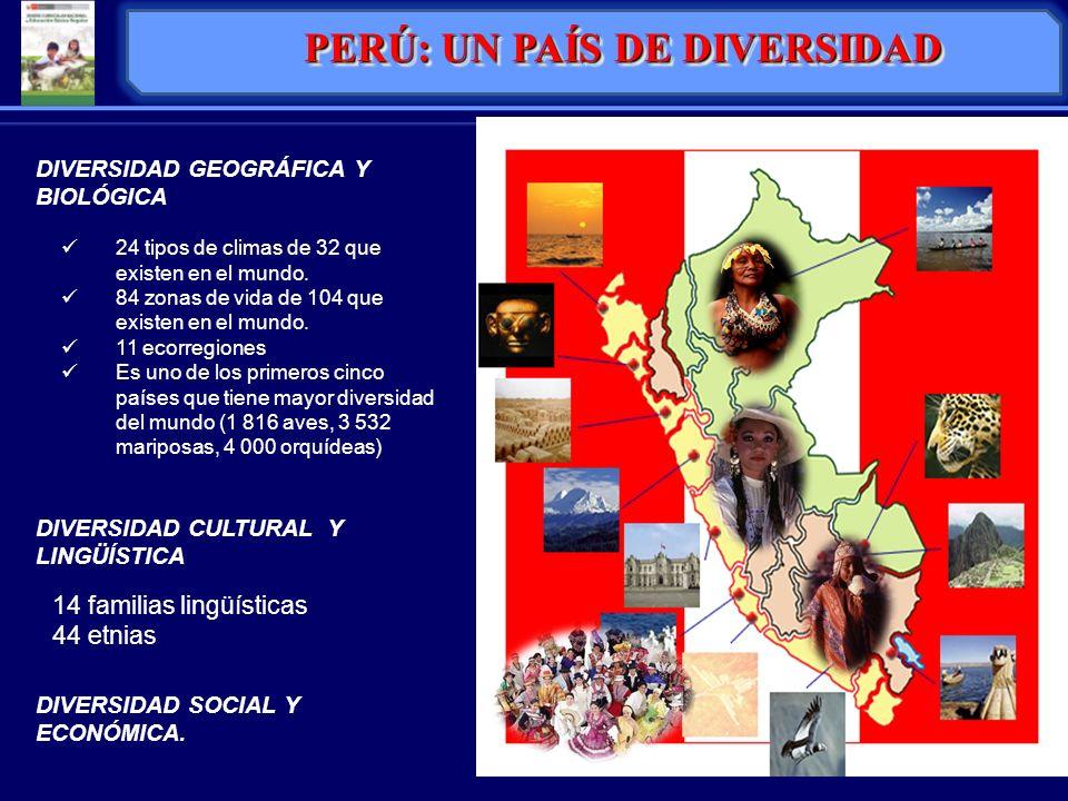 PROYECTO CURRICULAR INSTITUCIONAL INSTITUCIÓN EDUCATIVA ANTONIO RAYMONDI LLAMELLIN DIVERSIFICACIÓN EN LA INSTITUCIÓN EDUCATIVA