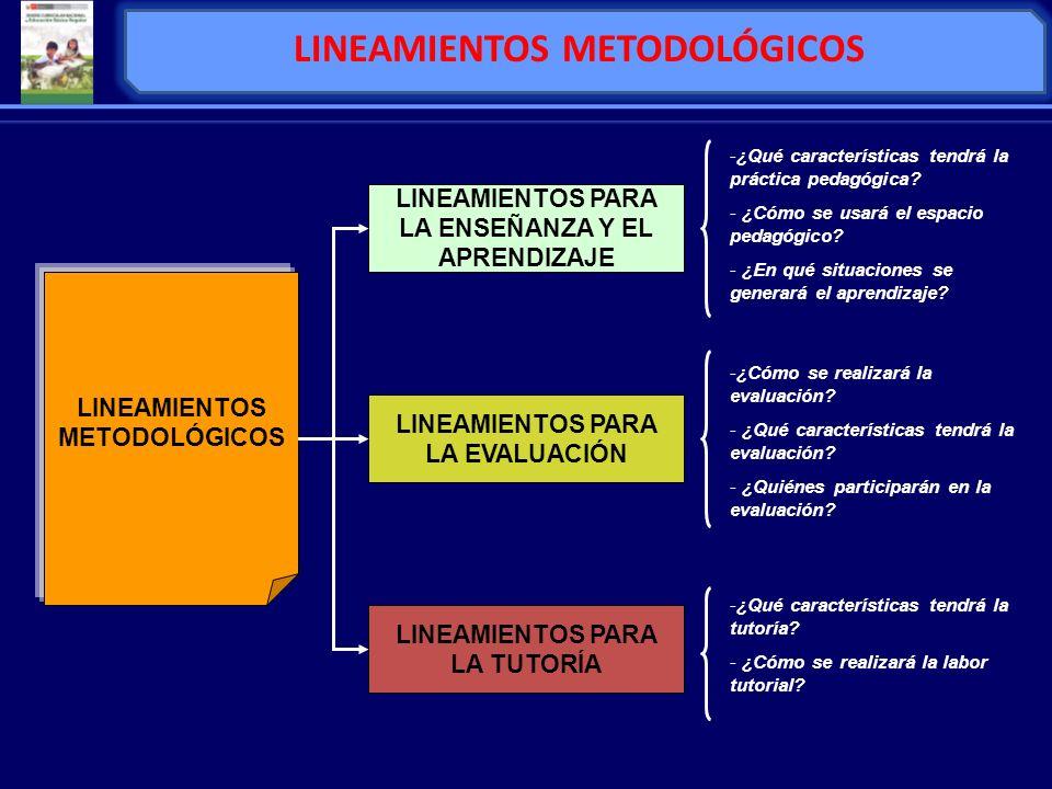 LINEAMIENTOS METODOLÓGICOS LINEAMIENTOS PARA LA ENSEÑANZA Y EL APRENDIZAJE LINEAMIENTOS PARA LA EVALUACIÓN LINEAMIENTOS PARA LA TUTORÍA -¿Qué caracter