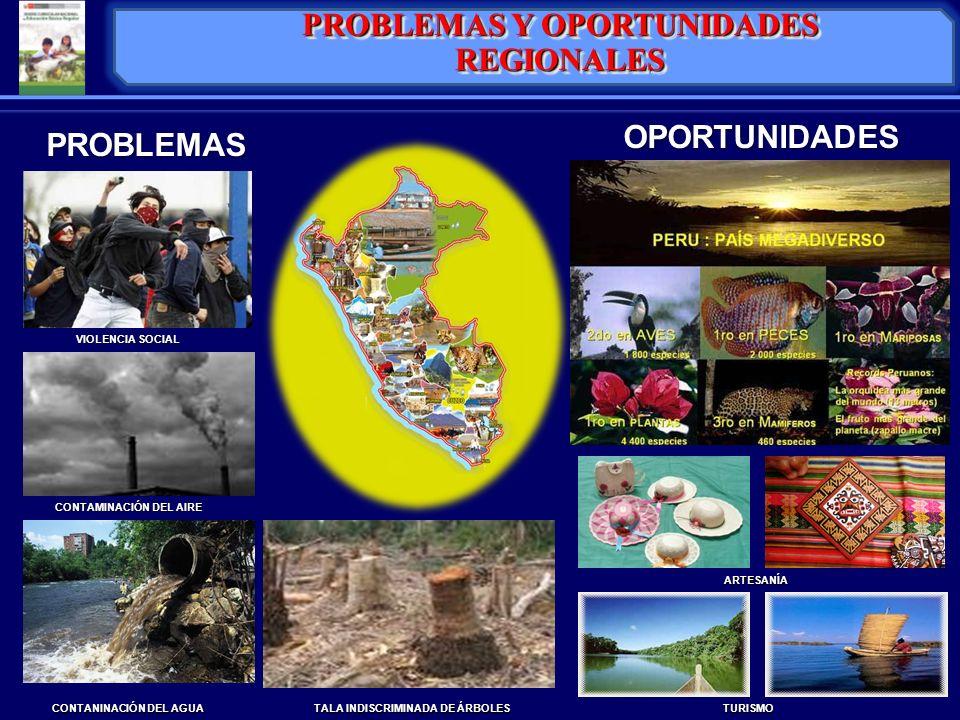 LINEAMIENTOS PARA LA DIVERSIFICACIÓN REGIONAL PROYECTO EDUCATIVO INSTITUCIONAL PROYECTO CURRICULAR INSTITUCIONAL DEMANDAS DEL SECTOR PRODUCTIVO NECESIDADES DE APRENDIZAJE DE ESTUDIANTES DIVERSIDAD EXISTENTE EN EL AULA AVANCES DE LA CIENCIAY TECNOLOGÍA DEMANDAS DEL ENTORNO LOCAL REGIONAL Y GLOBAL ORIENTACIONES PARA LA DIVERSIFICACIÓN EN LA INSTANCIA LOCAL REFERENTES PARA LA DIVERSIFICACIÓN CURRICULAR
