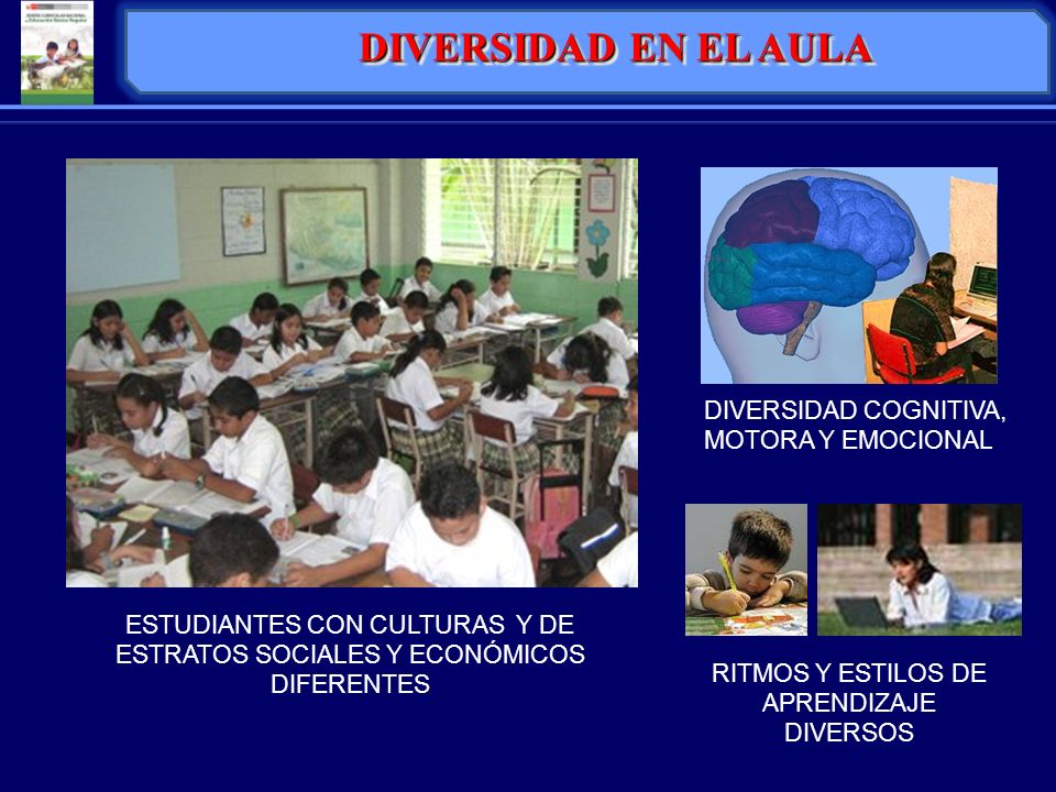 IDENTIDAD PROYECTOEDUCATIVOINSTITUCIONAL DIAGNÓSTICO PROPUESTA PEDAGÓGICA PROPUESTA DE GESTIÓN INSTITUCIONAL Concepciones de aprendizaje y de enseñanza.