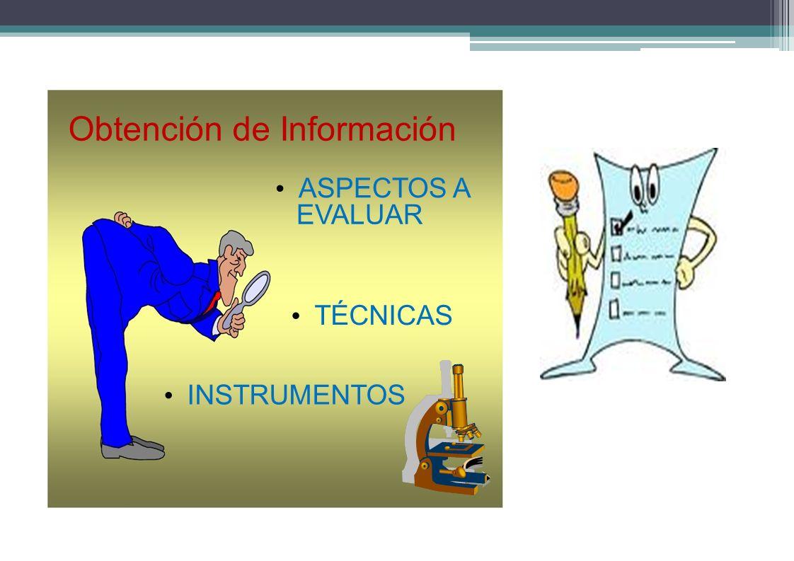 Obtención de Información ASPECTOS A EVALUAR TÉCNICAS INSTRUMENTOS