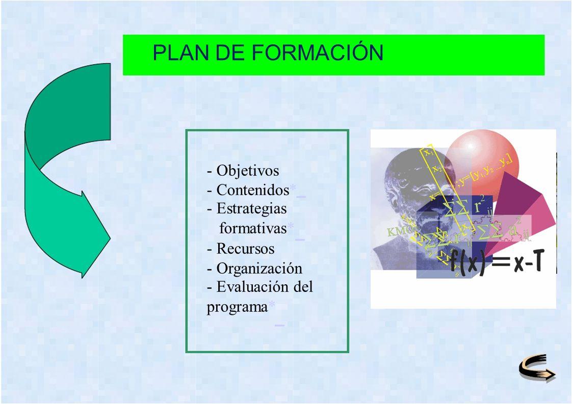 PLAN DE FORMACIÓN - Objetivos - Contenidos* - Estrategias formativas* - Recursos - Organización - Evaluación del programa*