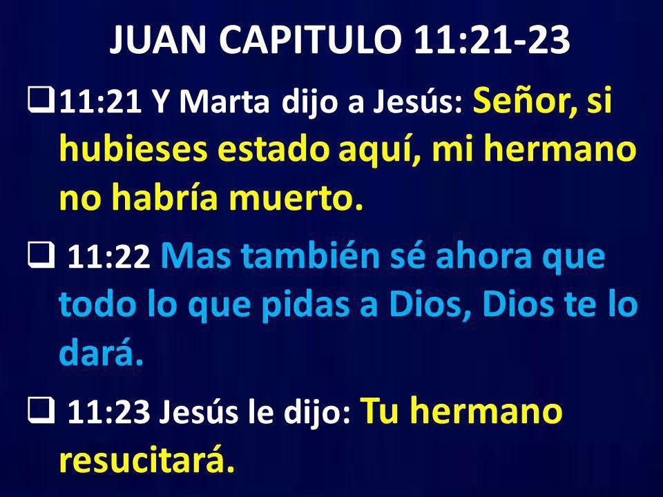 JUAN CAPITULO 11:21-23 11:21 Y Marta dijo a Jesús: Señor, si hubieses estado aquí, mi hermano no habría muerto. 11:22 Mas también sé ahora que todo lo