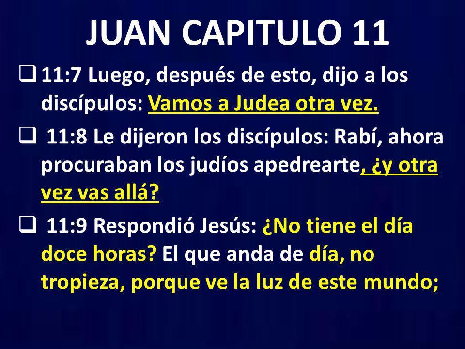 JUAN CAPITULO 11 11:7 Luego, después de esto, dijo a los discípulos: Vamos a Judea otra vez. 11:8 Le dijeron los discípulos: Rabí, ahora procuraban lo