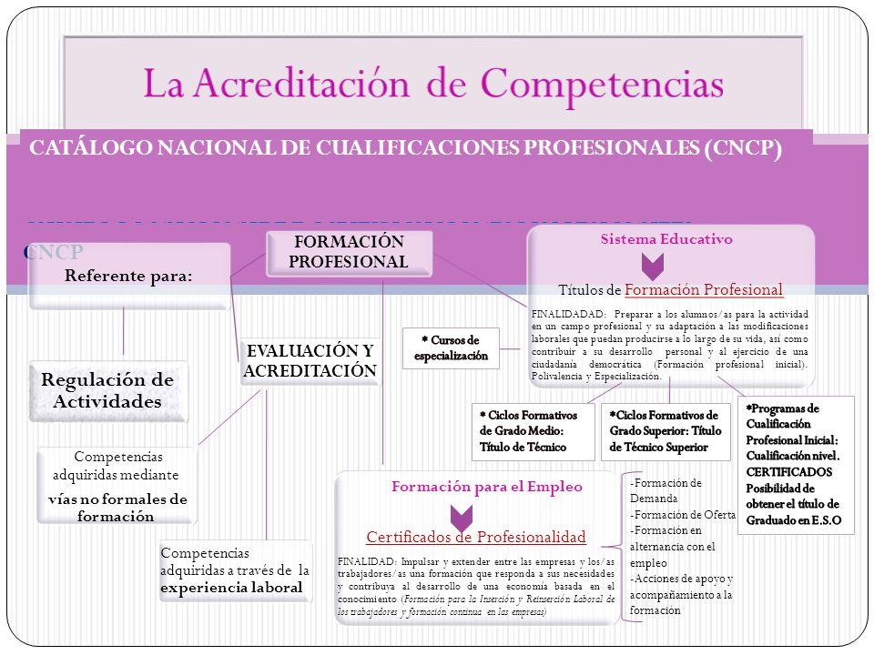 CATÁLOGO NACIONAL DE CUALIFICACIONES PROFESIONALES CNCP Referente para: FORMACIÓN PROFESIONAL Sistema Educativo Títulos de Formación Profesional FINAL