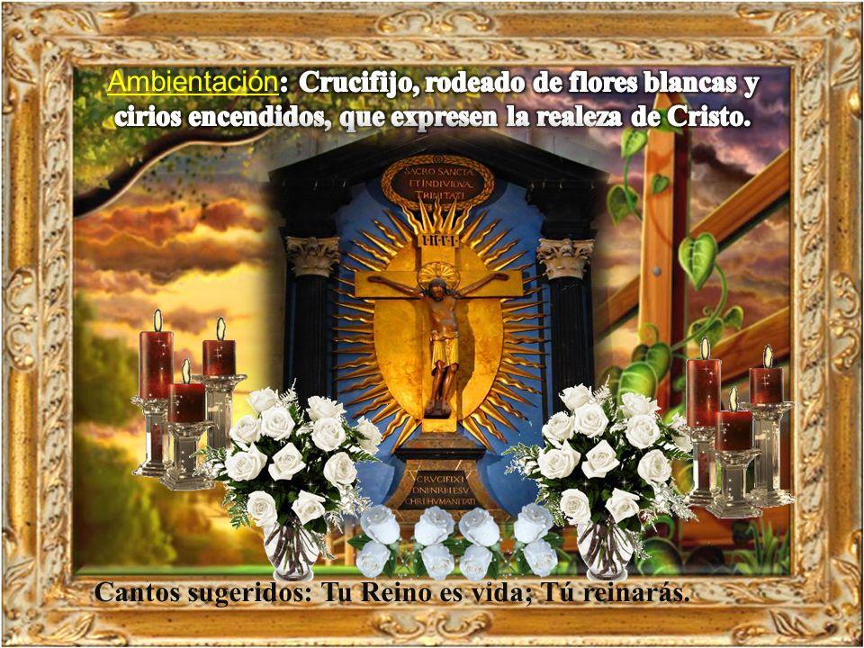 Jesús le contestó: – «Tú lo dices: soy rey.