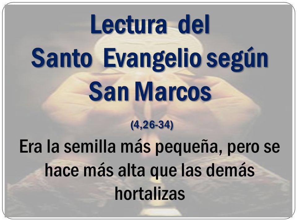 Lectura del Santo Evangelio según San Marcos (4,26-34) (4,26-34) Era la semilla más pequeña, pero se hace más alta que las demás hortalizas