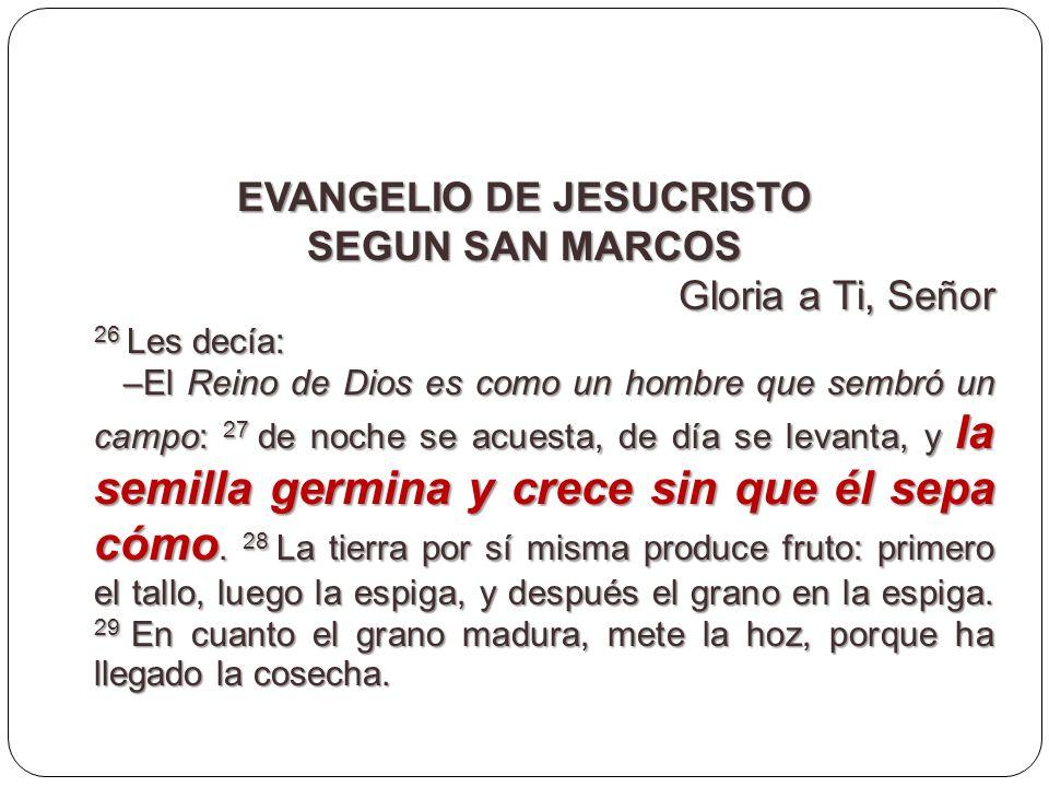 EVANGELIO DE JESUCRISTO SEGUN SAN MARCOS Gloria a Ti, Señor 26 Les decía: –El Reino de Dios es como un hombre que sembró un campo: 27 de noche se acue