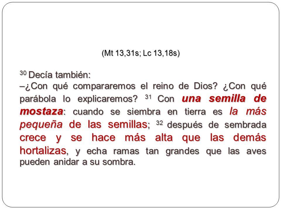 (Mt 13,31s; Lc 13,18s) 30 Decía también: –¿Con qué compararemos el reino de Dios? ¿Con qué parábola lo explicaremos? 31 Con una semilla de mostaza : c