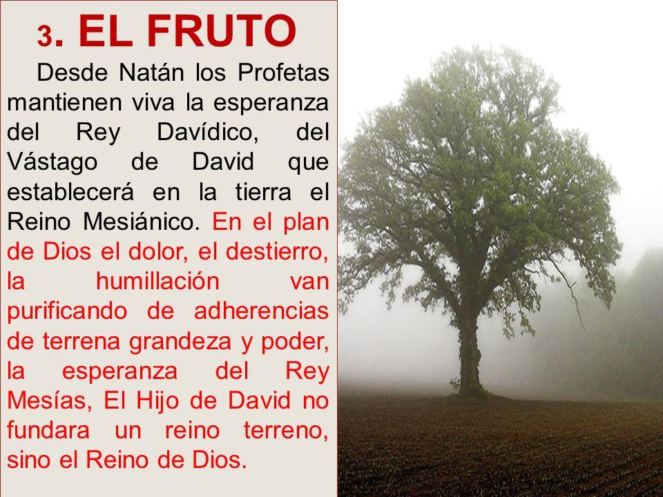 3. EL FRUTO Desde Natán los Profetas mantienen viva la esperanza del Rey Davídico, del Vástago de David que establecerá en la tierra el Reino Mesiánic