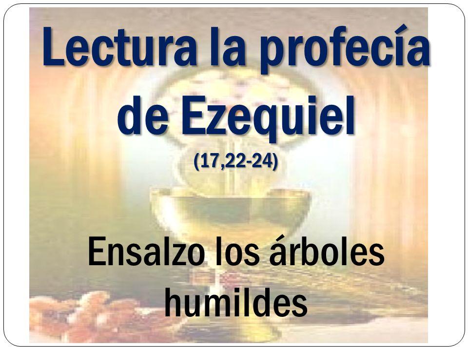 Lectura la profecía de Ezequiel (17,22-24) Ensalzo los árboles humildes