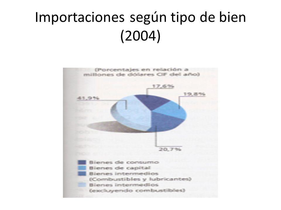 Importaciones según tipo de bien (2004)
