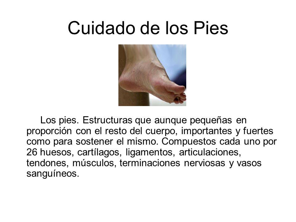 Cuidado de los Pies Los pies. Estructuras que aunque pequeñas en proporción con el resto del cuerpo, importantes y fuertes como para sostener el mismo