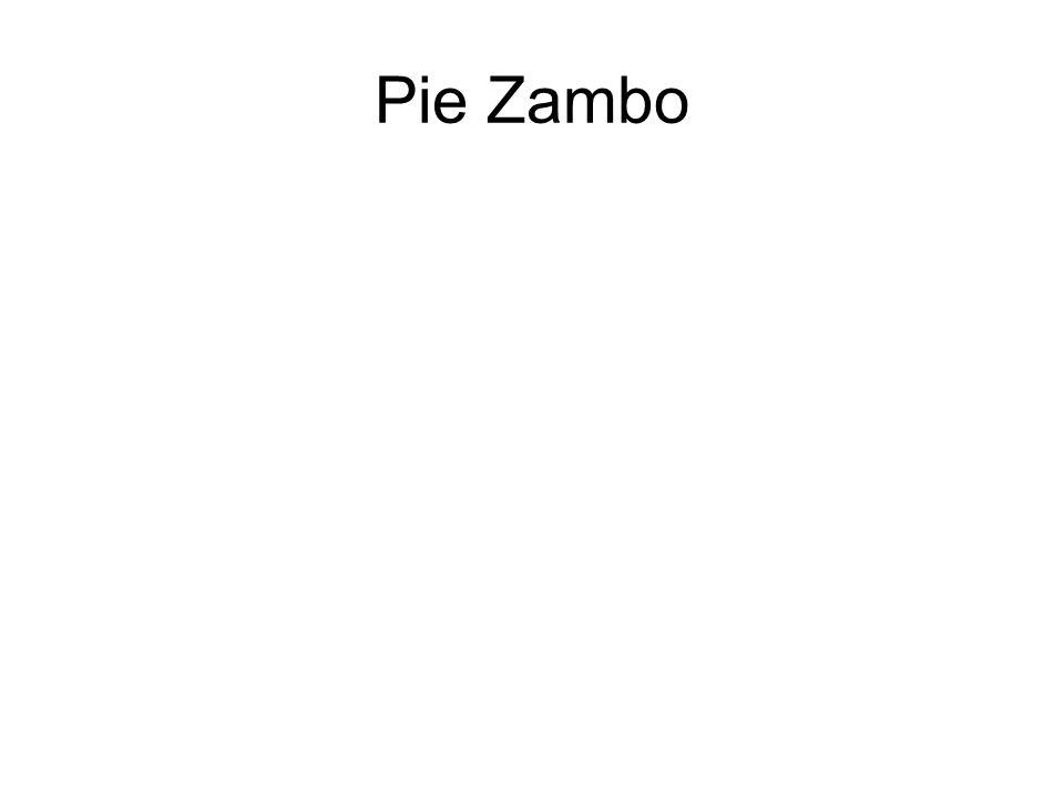 Pie Zambo