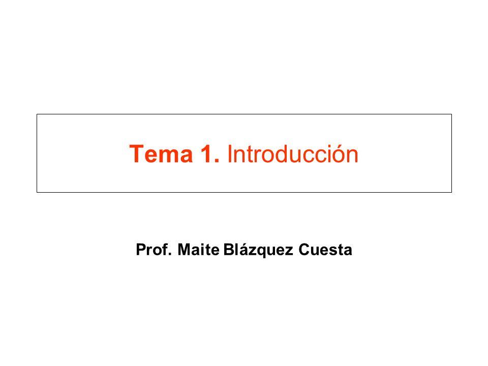 Tema 1. Introducción Prof. Maite Blázquez Cuesta