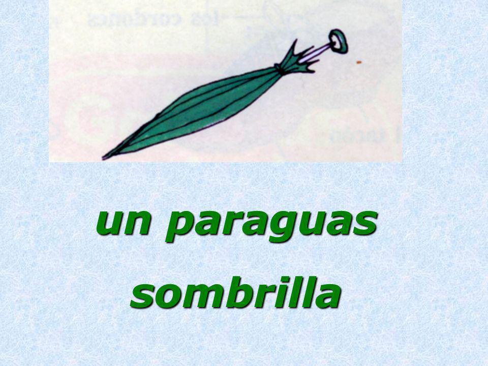 un paraguas sombrilla