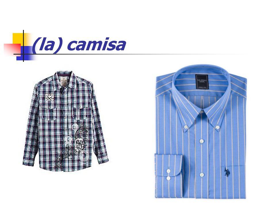 (la) camisa