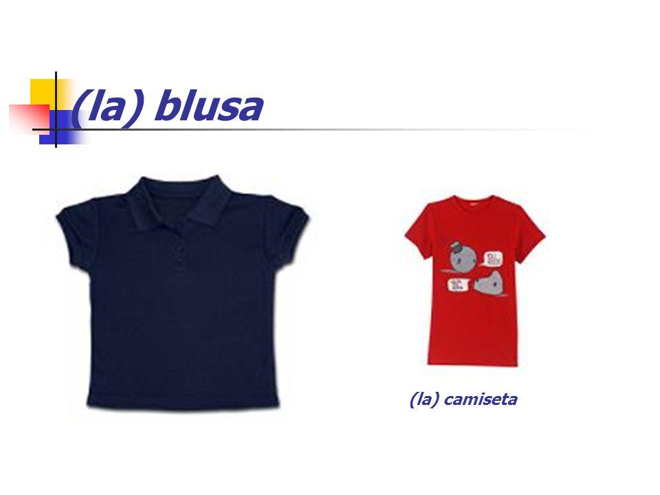 (la) blusa (la) camiseta
