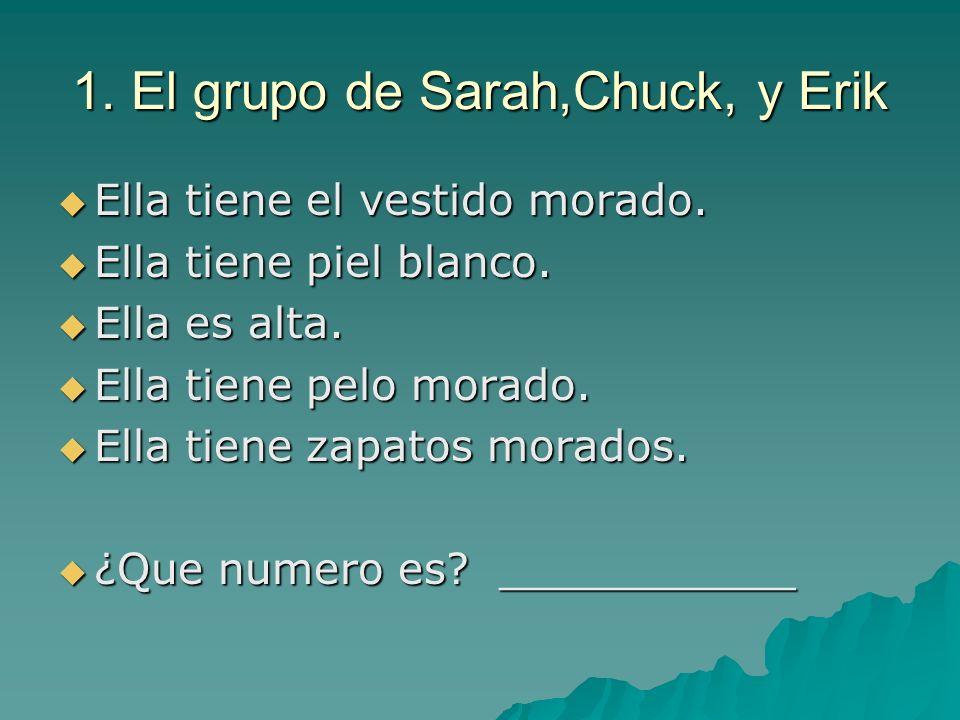 1. El grupo de Sarah,Chuck, y Erik Ella tiene el vestido morado. Ella tiene el vestido morado. Ella tiene piel blanco. Ella tiene piel blanco. Ella es