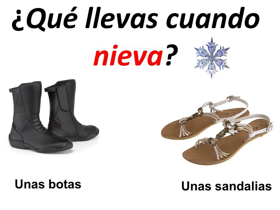 ¿Qué llevas cuando nieva? Unas botas Unas sandalias