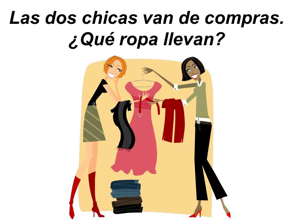 Las dos chicas van de compras. ¿Qué ropa llevan?