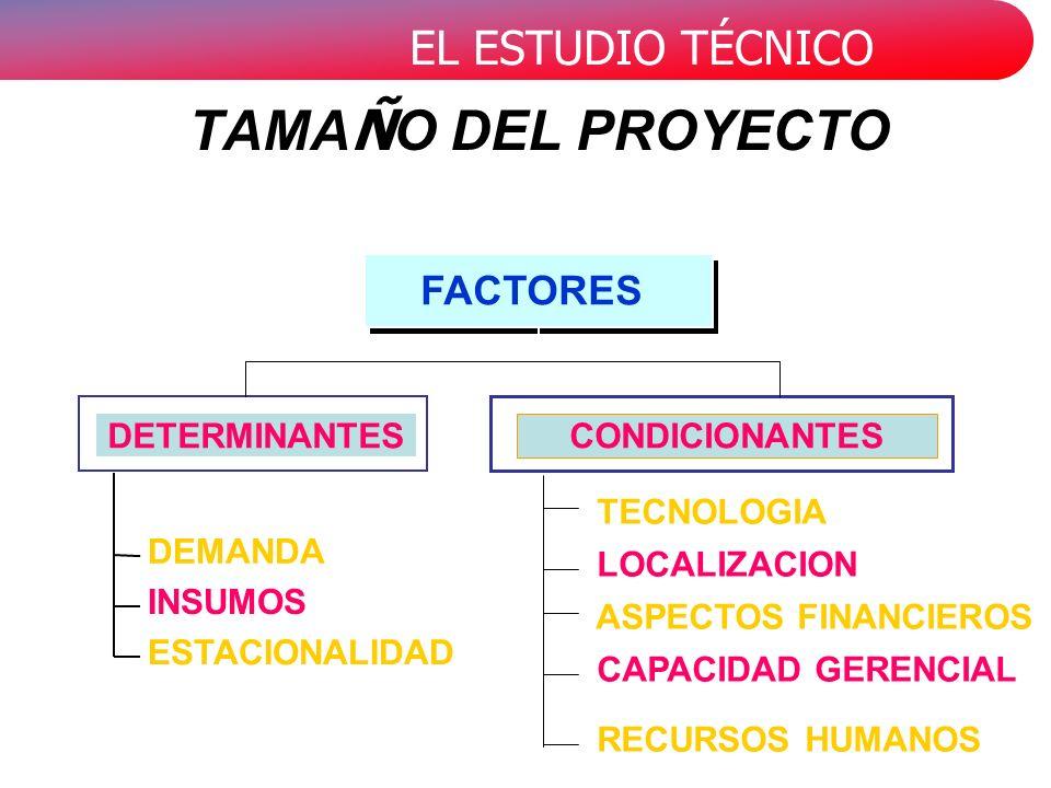 EL ESTUDIO TÉCNICO ASPECTOS FINANCIEROS CAPACIDAD GERENCIAL RECURSOS HUMANOS DEMANDA INSUMOS ESTACIONALIDAD DETERMINANTES TECNOLOGIA LOCALIZACION CONDICIONANTES FACTORES TAMA Ñ O DEL PROYECTO