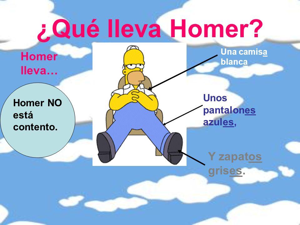 ¿Qué lleva Homer.Homer lleva… Una camisa blanca Unos pantalones azules, Y zapatos grises.