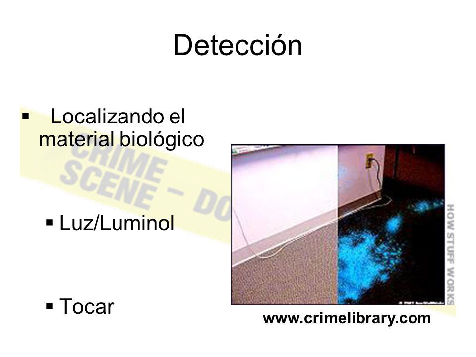 Steps in processing biological evidence Detección Identificación Clasificación