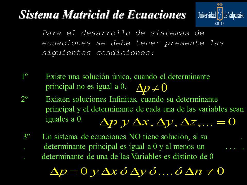 Sistema Matricial de Ecuaciones Para el desarrollo de sistemas de ecuaciones se debe tener presente las siguientes condiciones: 1ºExiste una solución única, cuando el determinante principal no es igual a 0.