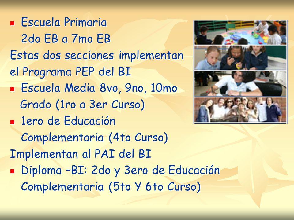 Escuela Primaria Escuela Primaria 2do EB a 7mo EB Estas dos secciones implementan el Programa PEP del BI Escuela Media 8vo, 9no, 10mo Escuela Media 8vo, 9no, 10mo Grado (1ro a 3er Curso) Grado (1ro a 3er Curso) 1ero de Educación 1ero de Educación Complementaria (4to Curso) Implementan al PAI del BI Diploma –BI: 2do y 3ero de Educación Diploma –BI: 2do y 3ero de Educación Complementaria (5to Y 6to Curso)