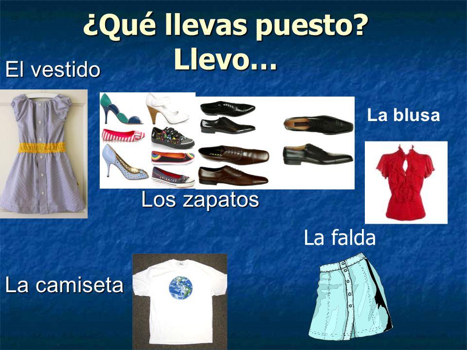 El vestido Los zapatos La camiseta La blusa La falda