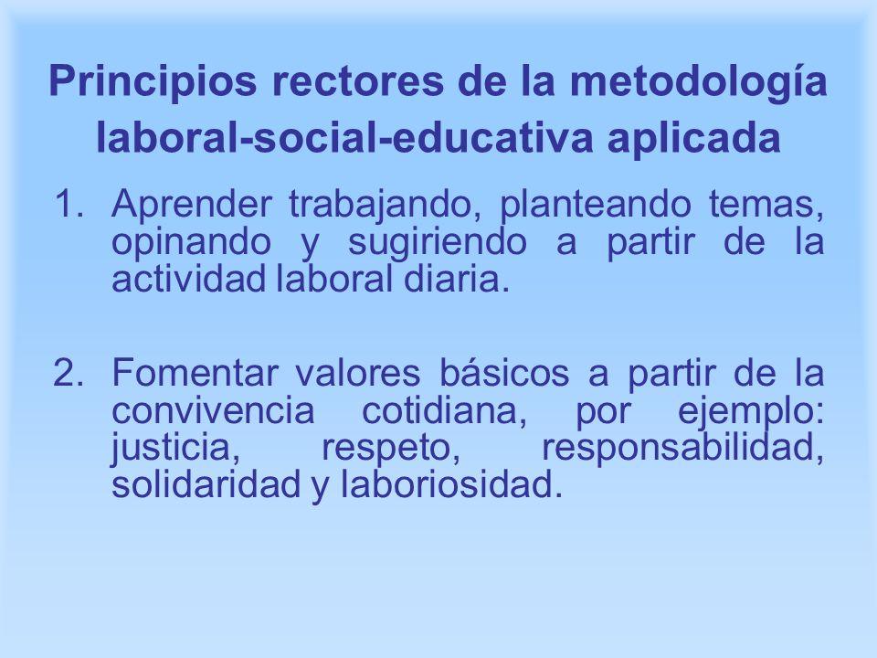 Principios rectores de la metodología laboral-social-educativa aplicada 1.Aprender trabajando, planteando temas, opinando y sugiriendo a partir de la