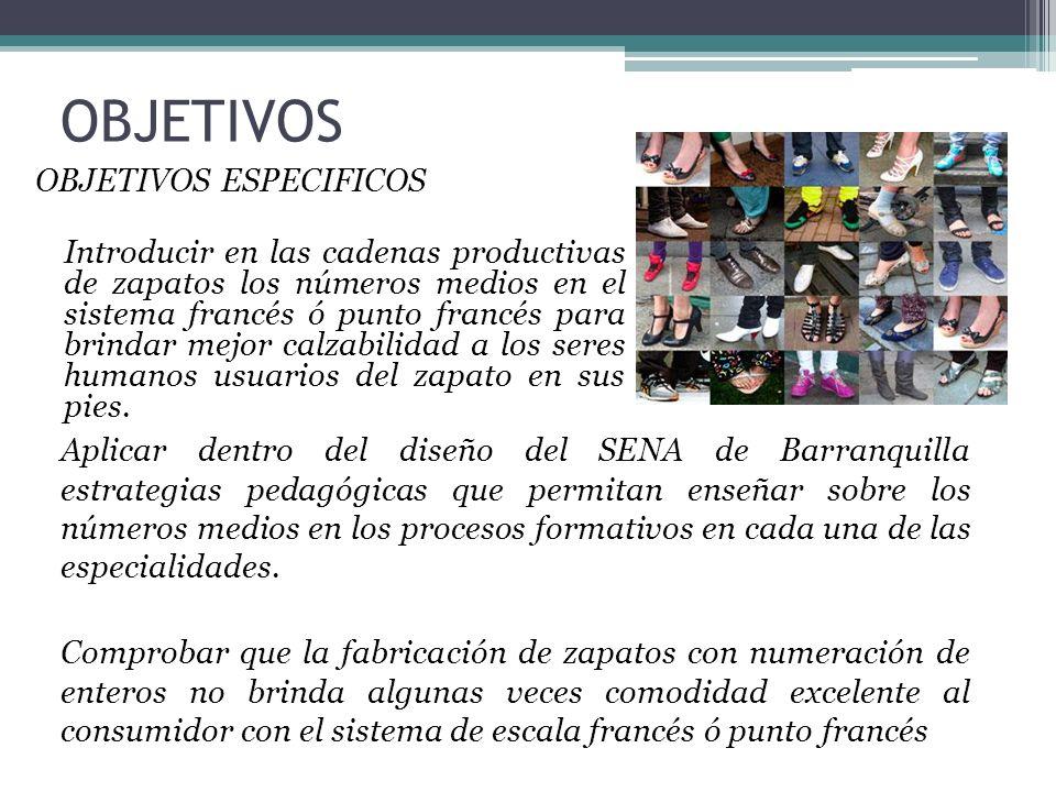 OBJETIVOS OBJETIVOS ESPECIFICOS Introducir en las cadenas productivas de zapatos los números medios en el sistema francés ó punto francés para brindar