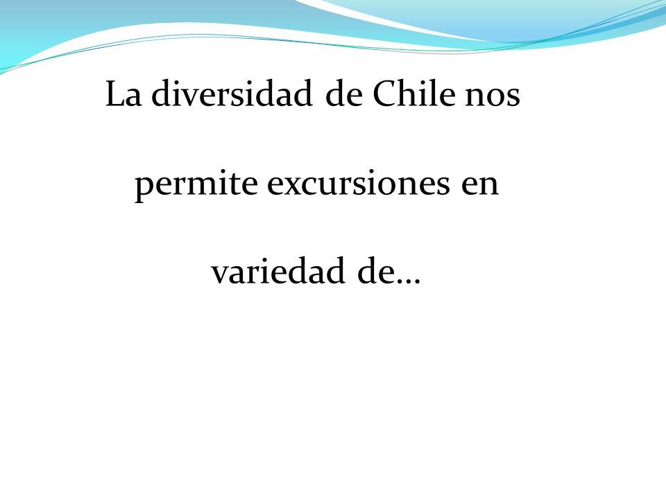La diversidad de Chile nos permite excursiones en variedad de…