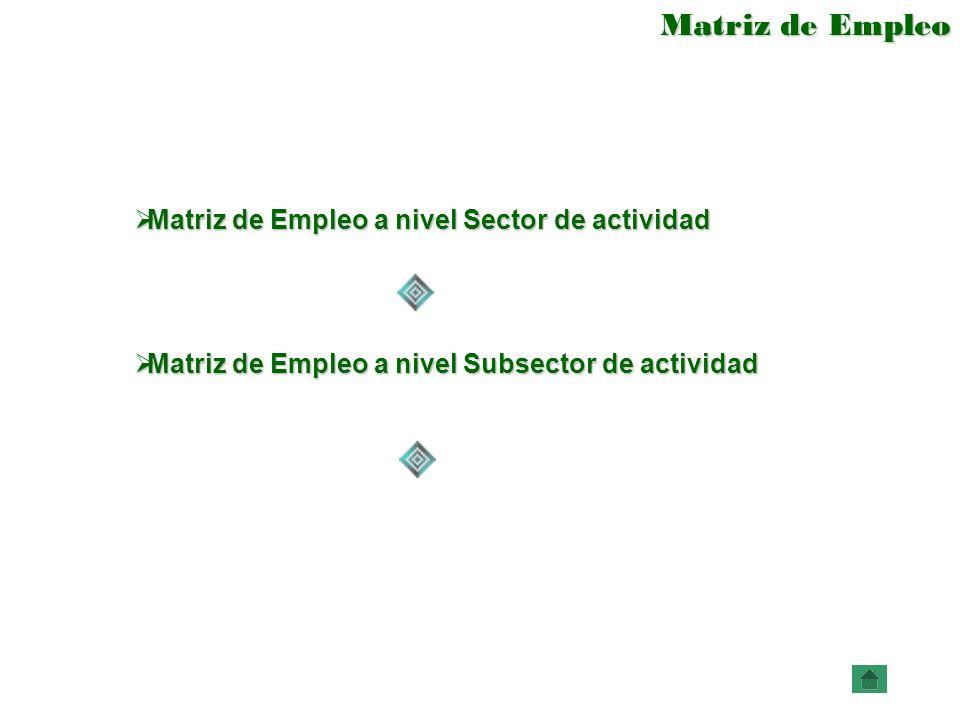Matriz de Empleo Matriz de Empleo a nivel Sector de actividad Matriz de Empleo a nivel Sector de actividad Matriz de Empleo a nivel Subsector de activ
