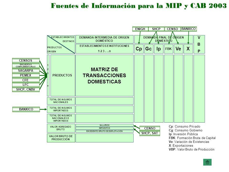 Fuentes de Información para la MIP y CAB 2003 BANXICO SHCP, SAT BANXICO Cp: Consumo Privado Cg: Consumo Gobierno Ip: Inversión Pública FBK: Formación