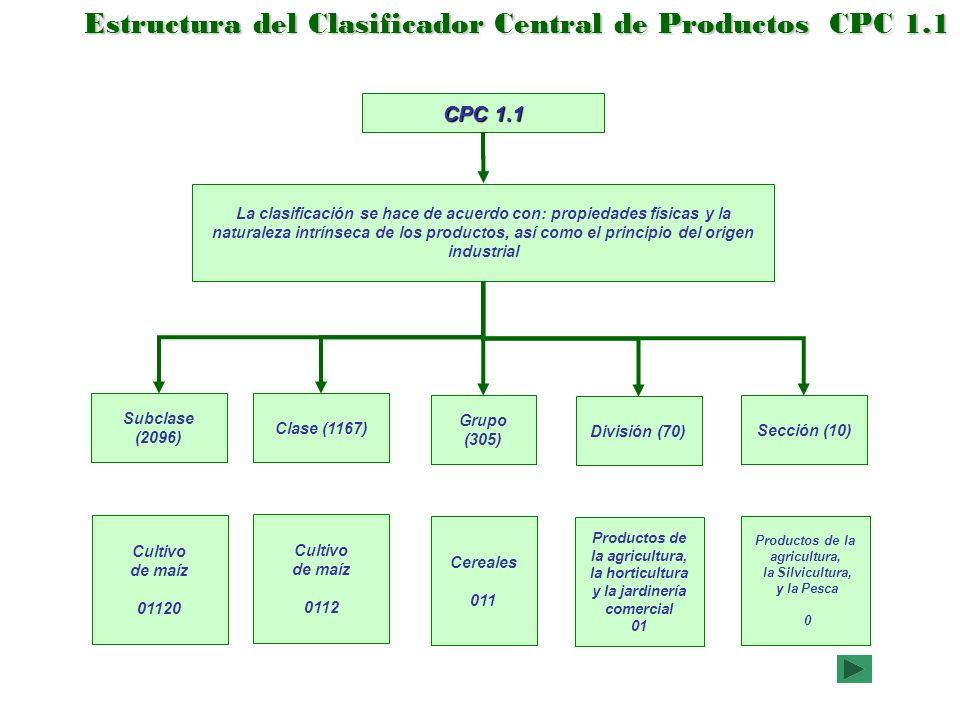Ejemplo de la Clasificación por Productos Código SCIAN del Producto Código SCIAN del establecimiento Clave Nombre SCIAN ClaveClave Nombre CPC 1.1 Nombre Familia Nombre Productos