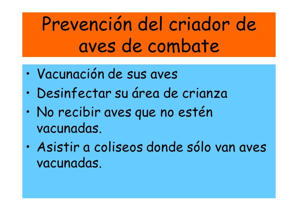 Prevención del criador de aves de combate Vacunación de sus aves Desinfectar su área de crianza No recibir aves que no estén vacunadas. Asistir a coli