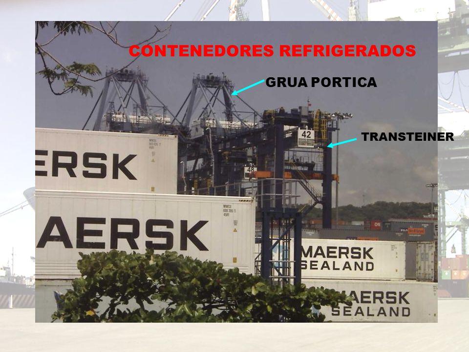 CONTENEDORES REFRIGERADOS TRANSTEINER GRUA PORTICA