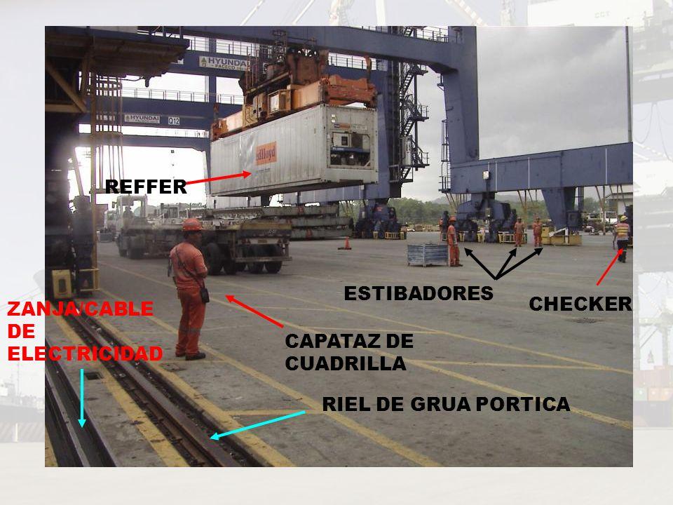 CAPATAZ DE CUADRILLA CHECKER ESTIBADORES REFFER RIEL DE GRUA PORTICA ZANJA/CABLE DE ELECTRICIDAD