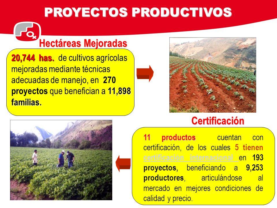 20,744 has. 11,898 familias. 20,744 has. de cultivos agrícolas mejoradas mediante técnicas adecuadas de manejo, en 270 proyectos que benefician a 11,8