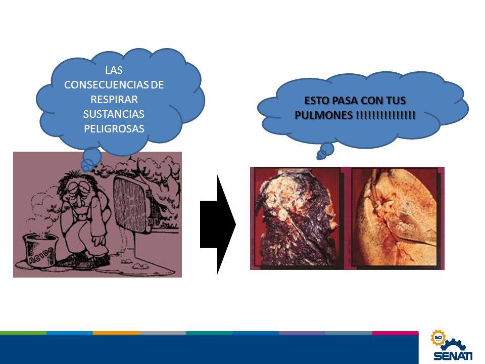 LAS CONSECUENCIAS DE RESPIRAR SUSTANCIAS PELIGROSAS ESTO PASA CON TUS PULMONES !!!!!!!!!!!!!!!