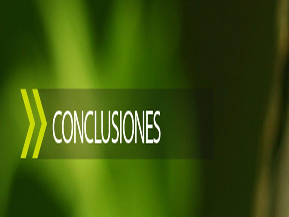 UNIVERSIDAD TECNOLÓGICA ECOTEC. ISO 9001:2008 Bruno Pagnacco 15