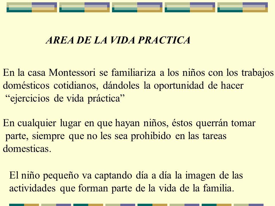 AREA DE LA VIDA PRACTICA En la casa Montessori se familiariza a los niños con los trabajos domésticos cotidianos, dándoles la oportunidad de hacer eje