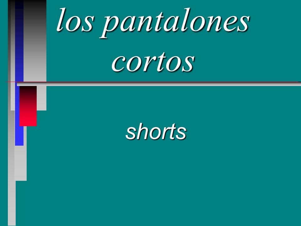 los pantalones cortos shorts