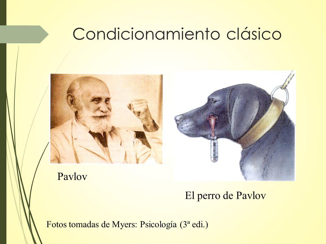 Condicionamiento clásico Pavlov El perro de Pavlov Fotos tomadas de Myers: Psicología (3ª edi.)