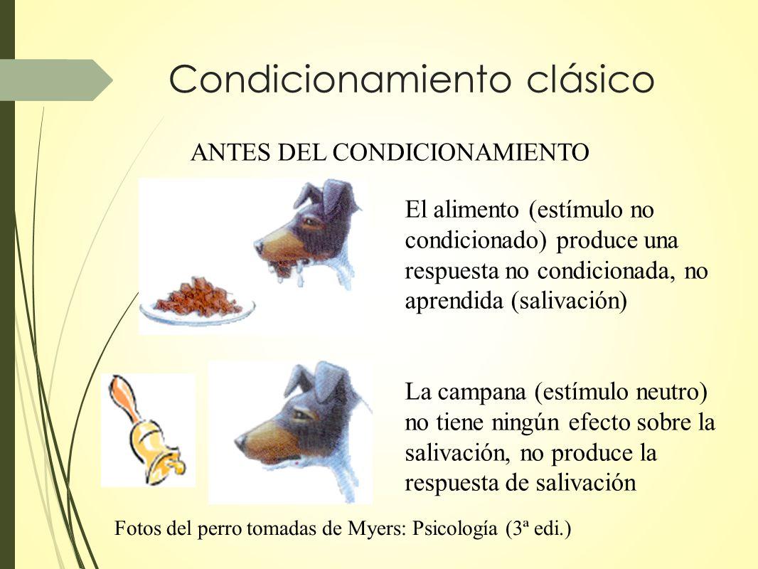 Condicionamiento clásico ANTES DEL CONDICIONAMIENTO El alimento (estímulo no condicionado) produce una respuesta no condicionada, no aprendida (saliva