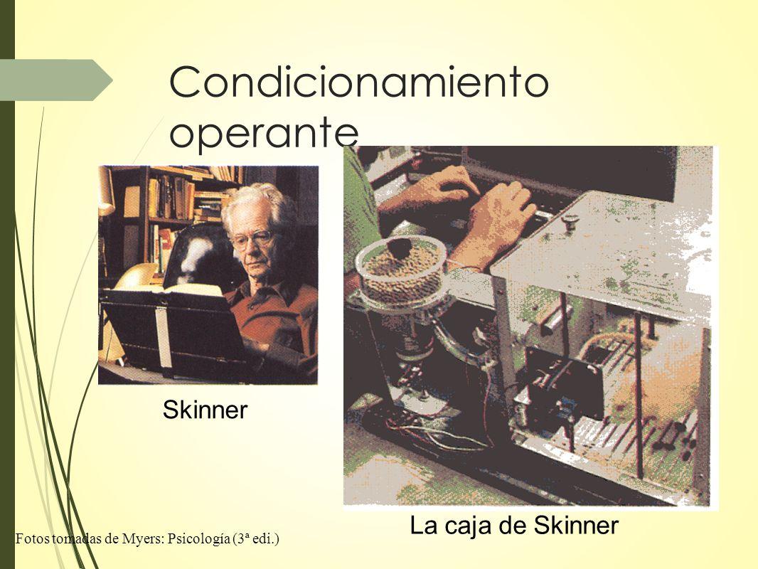 Condicionamiento operante Skinner La caja de Skinner Fotos tomadas de Myers: Psicología (3ª edi.)