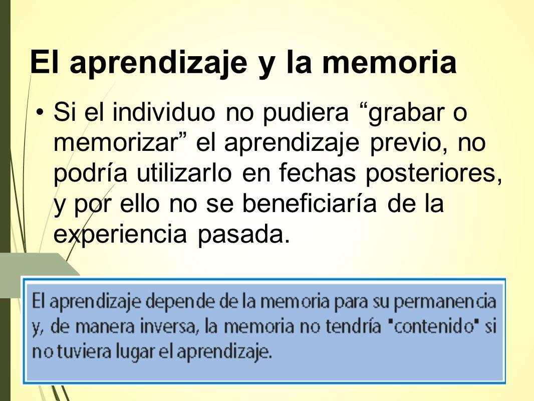 El aprendizaje y la memoria Si el individuo no pudiera grabar o memorizar el aprendizaje previo, no podría utilizarlo en fechas posteriores, y por ello no se beneficiaría de la experiencia pasada.