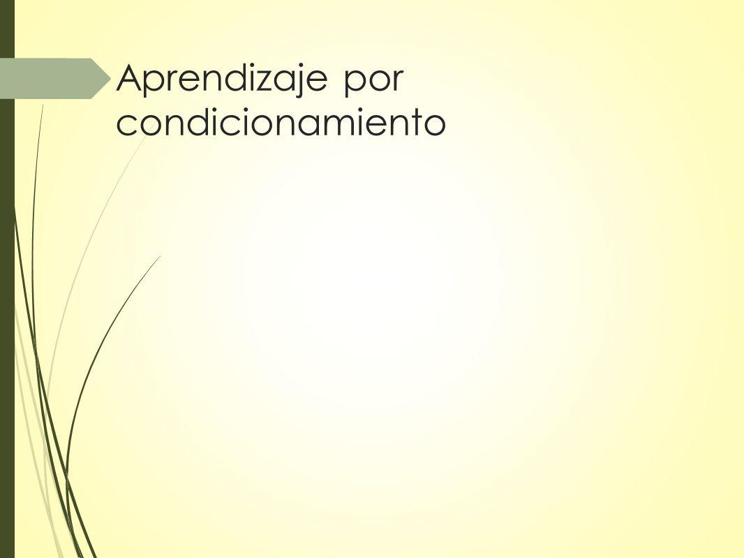 Condicionamiento operante Según el tiempo que transcurre entre la respuesta y el reforzador: Reforzador inmediato: tienen mayor probabilidad de consolidar la conducta deseada (no hay posibilidad de que la gratificación se asocie a otra conducta que haya aparecido en el intervalo de tiempo transcurrido) Reforzador demorado: es necesario aprender a recibir recompensas a largo plazo para funcionar eficazmente en nuestra sociedad